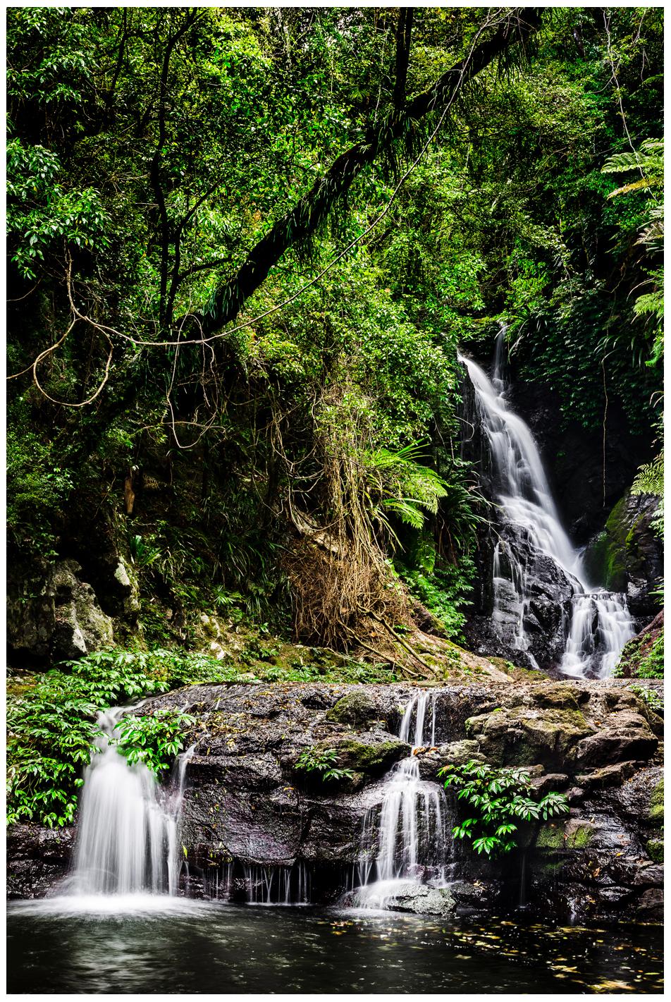 elabana waterfall in lamington national park qld australia