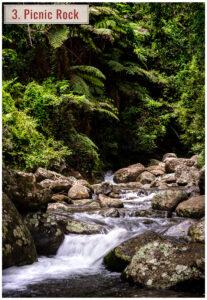 mountain creek in lamington national park queensland