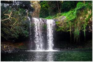 killen falls waterfall in byron bay nsw