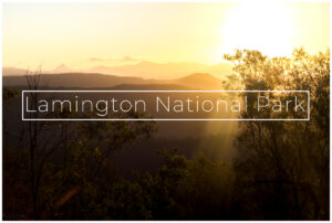 lamington national park sunset in qld australia
