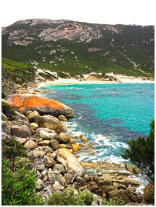 wilsons promontory national park beach view