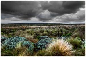 port campbell landscape australia