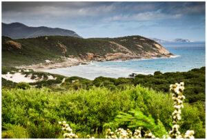 wilsons promontory national park beach